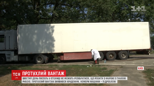 В Украине неделю на трассе стоит «угнанная фура с гнилой рыбой» 1