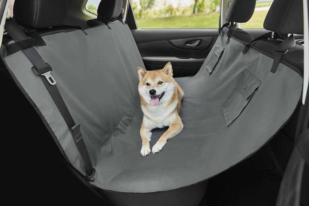 Рейтингприспособлений для комфортной перевозки животных в автомобиле 1