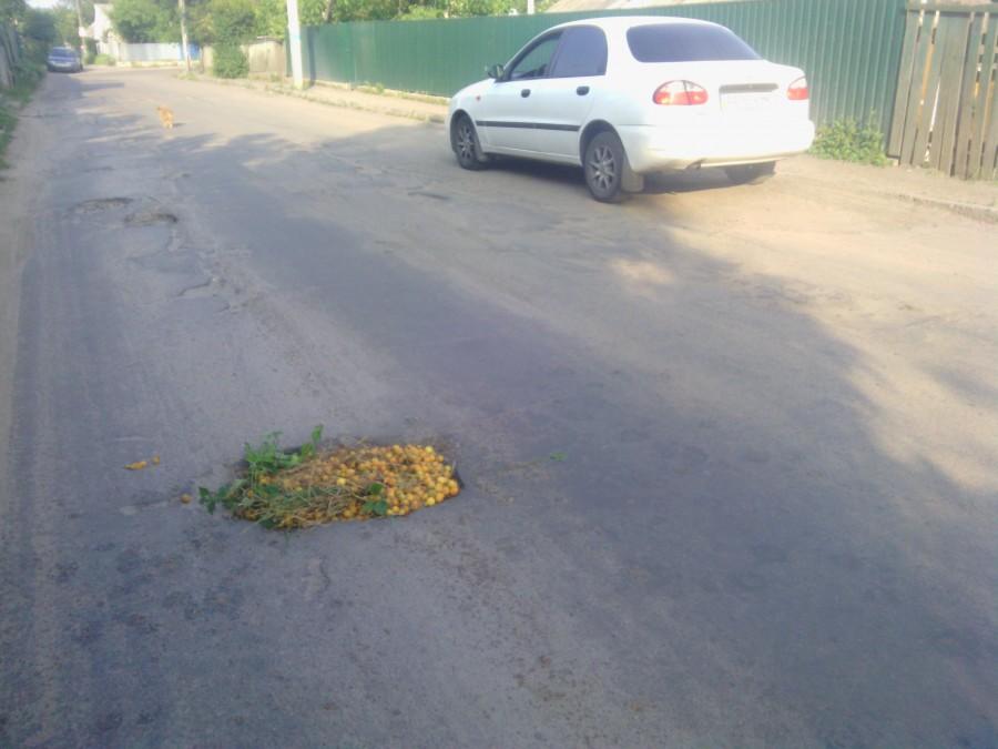 Как в Украине «отремонтировали» дороги к началу курортного сезона 1