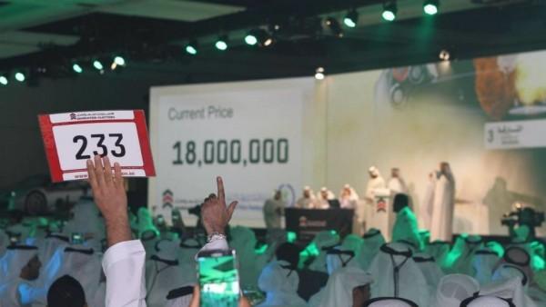 Бизнесмен из ОАЭ приобрел автомобильный номер за $5 миллионов 3