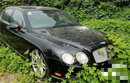 В Китае найдена свалка автомобилей с заброшенными Land Rover и Bentley 2