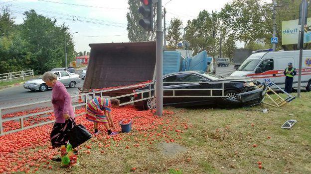 Выпрыгнувший из грузовика тигр создал пробку на трассе 4