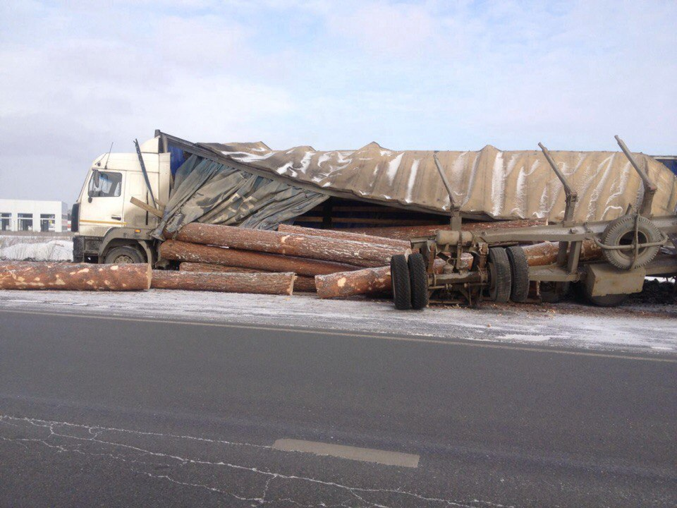 Выпрыгнувший из грузовика тигр создал пробку на трассе 5
