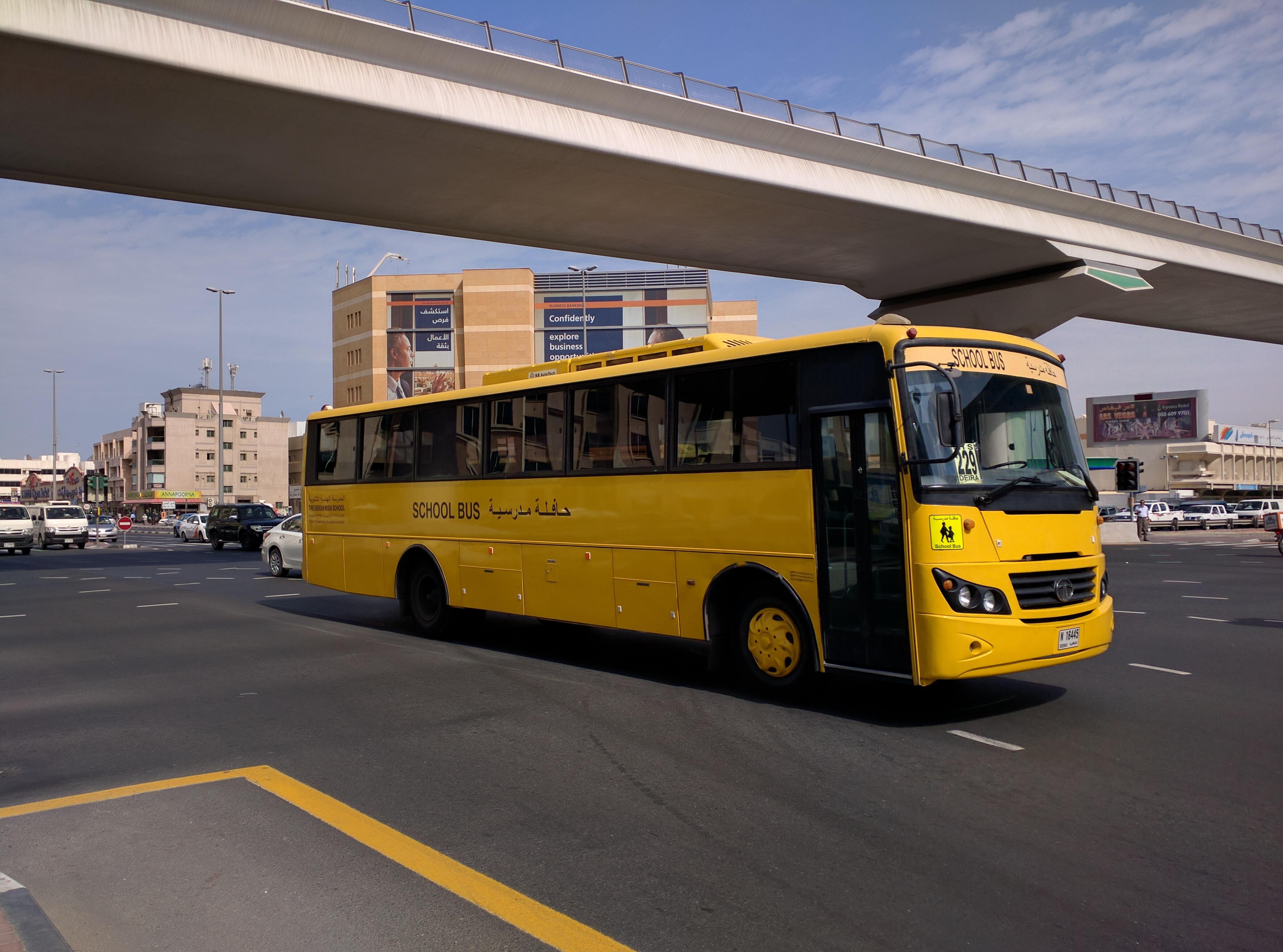 «Арабская жемчужина» или как мы удивлялись дорогам и транспорту в Дубае 1