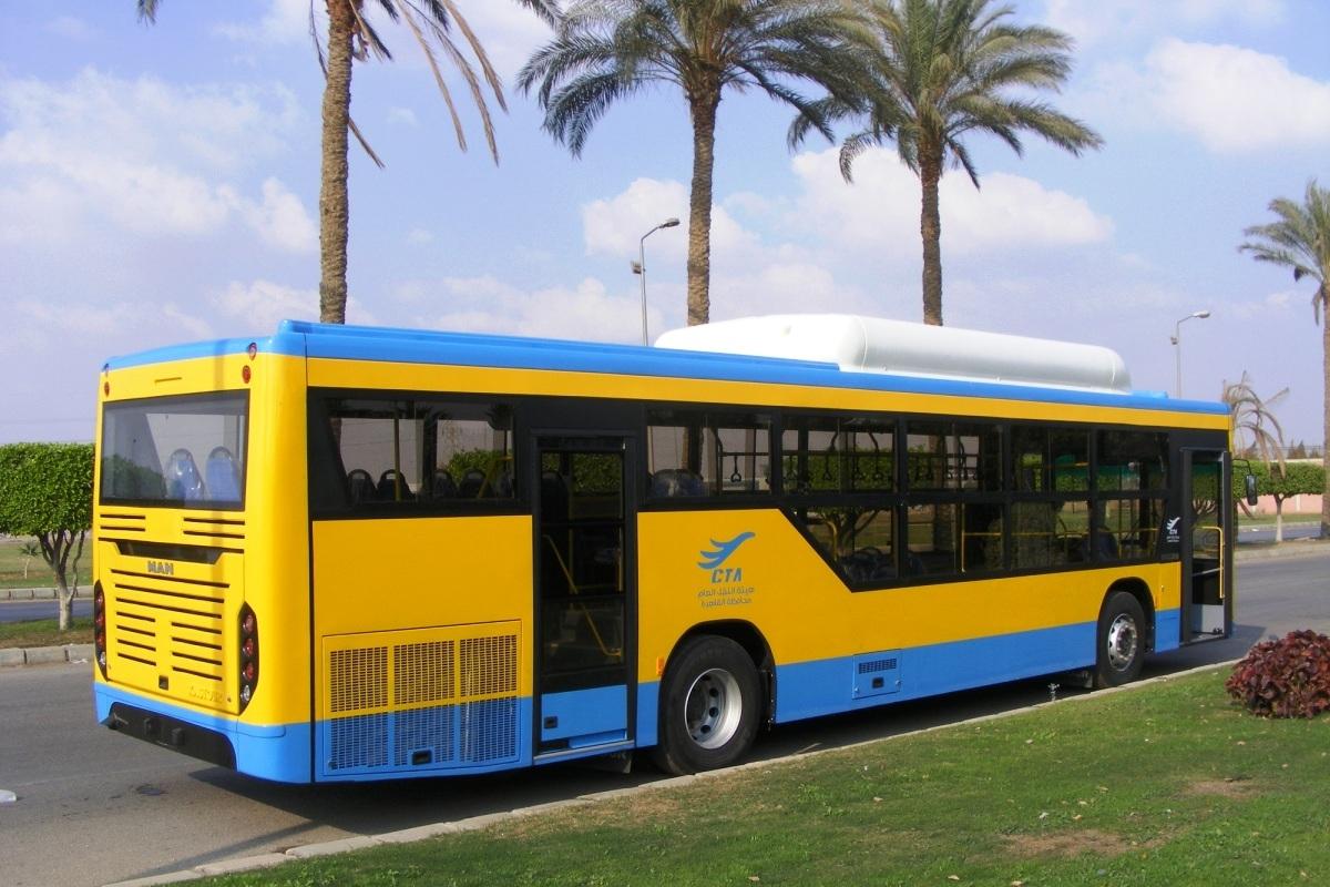 В Каире появятся газовые автобусы MAN с египетскими кузовами