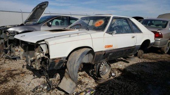 Редкий Ford Mustang Cobra нашел приют на свалке