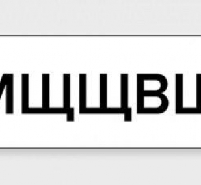 «Мщщвщщ» - самый странный индивидуальный номерной знак в Украине