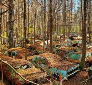 Как выглядит самое старое кладбище автомобилей