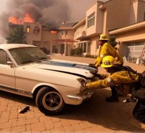 Калифорнийские пожарные спасли от огня редкий «Мустанг»