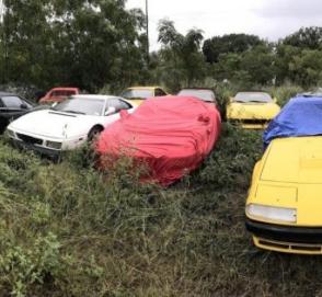 В поле нашли коллекцию брошенных классических Ferrari