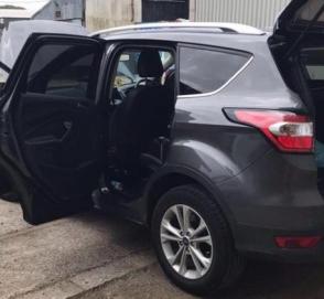 Скромный сирийский хомяк изгрыз в лоскуты автомобиль британки