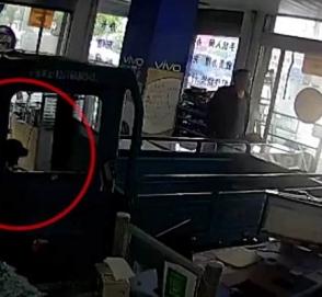 Собака за рулем грузовика перепутала педали и врезалась в магазин