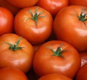 Пенсионерка объявила автомобилистам «томатную войну»