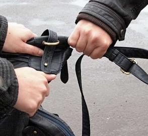 Пожилой мужчина с товарищем дали отпор вооруженным грабителям на мопедах