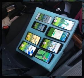 Полицейские остановили водителя, ловившего покемонов на 8 телефонов