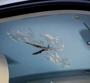 Автомобиль Rolls-Royce получил уникальную вышивку в салоне