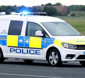 Volkswagen создал фургон для транспортировки полицейских собак